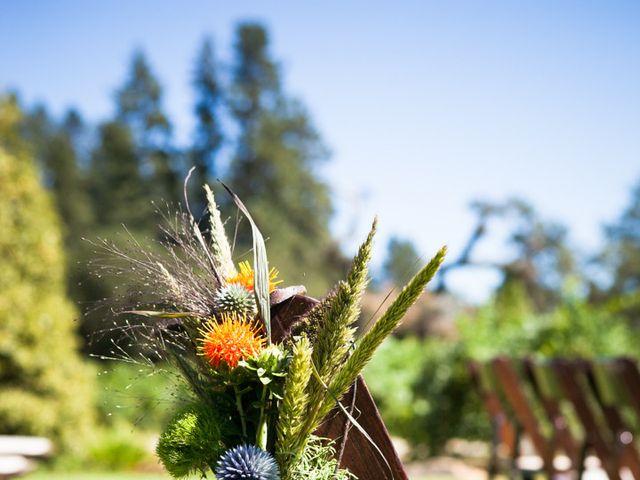 Jen and Egan's Wedding in Glen Ellen, California 10