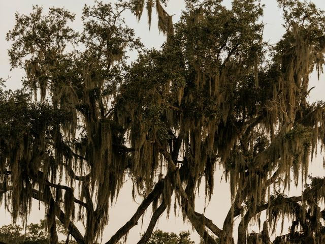 James and Danielle's Wedding in Plant City, Florida 3