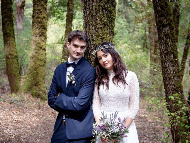 Alex and Henry's Wedding in Felton, California 3