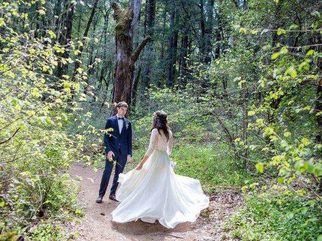 Alex and Henry's Wedding in Felton, California 4