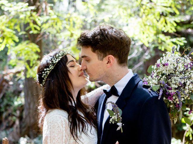Alex and Henry's Wedding in Felton, California 11