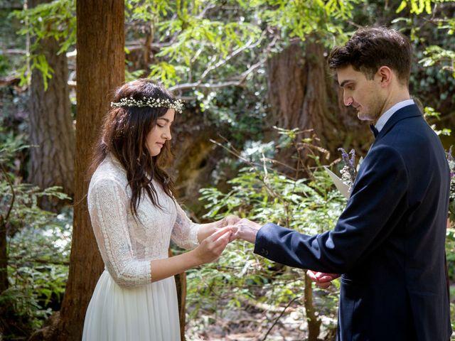 Alex and Henry's Wedding in Felton, California 14