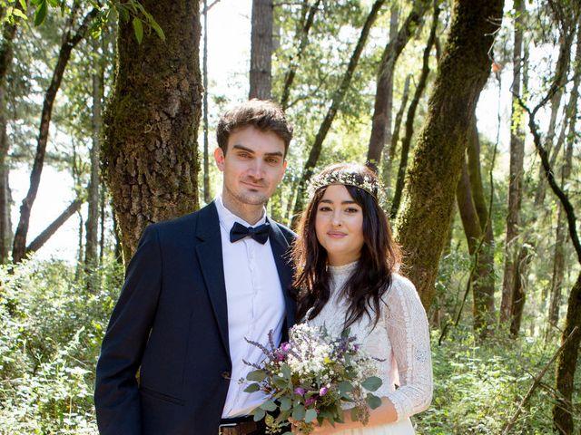 Alex and Henry's Wedding in Felton, California 15