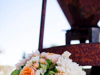 The wedding of Scott and Ashley 2