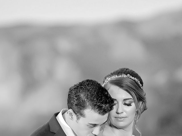 Stephanie and James's Wedding in Gold Canyon, Arizona 10