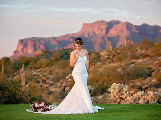 Stephanie and James's Wedding in Gold Canyon, Arizona 11
