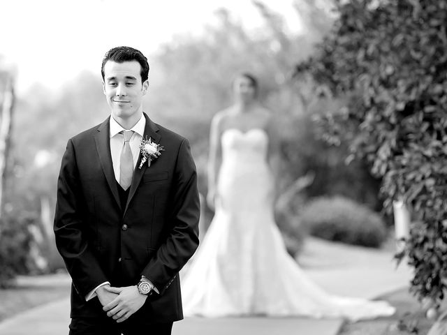 Stephanie and James's Wedding in Gold Canyon, Arizona 19