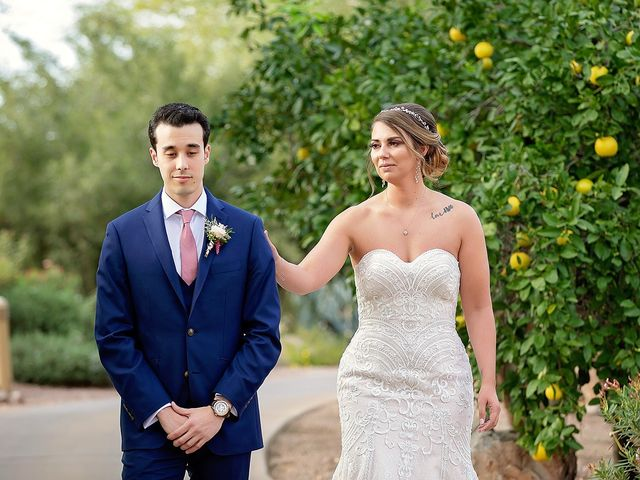 Stephanie and James's Wedding in Gold Canyon, Arizona 23