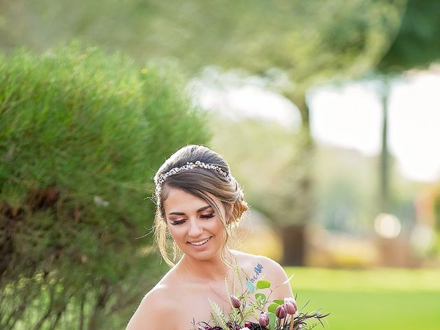Stephanie and James's Wedding in Gold Canyon, Arizona 29