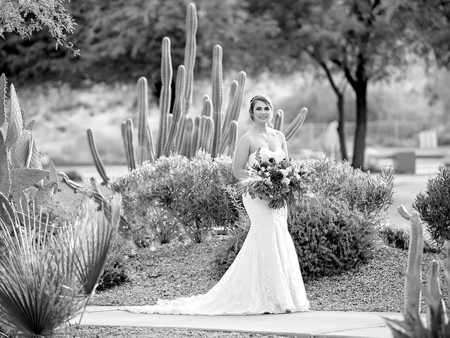 Stephanie and James's Wedding in Gold Canyon, Arizona 36