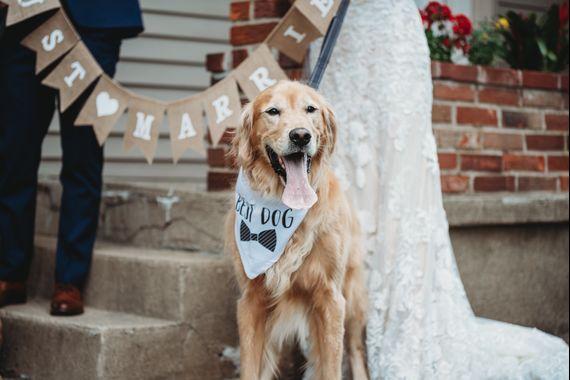 T.. and C..'s Wedding in Cincinnati, Ohio 5