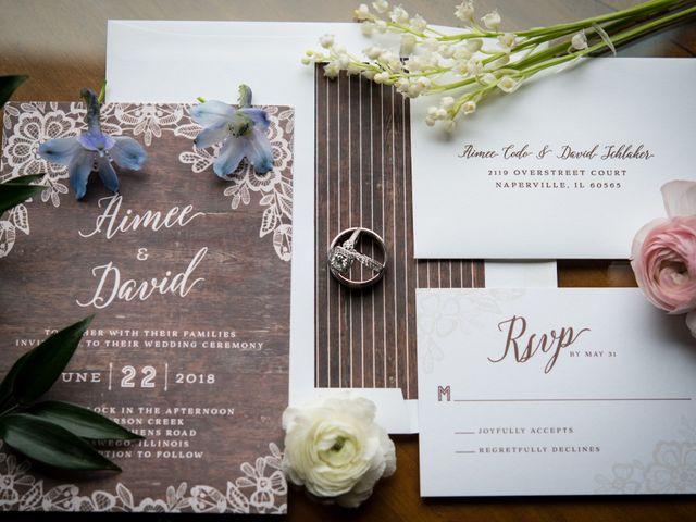 David and Aimee's Wedding in Oswego, Illinois 28