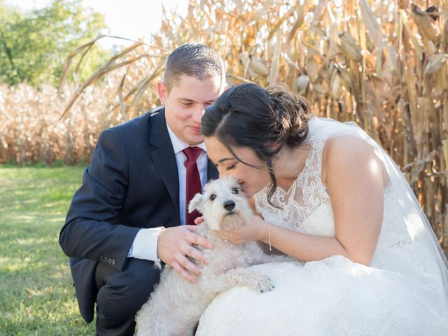 The wedding of Emi and Zach