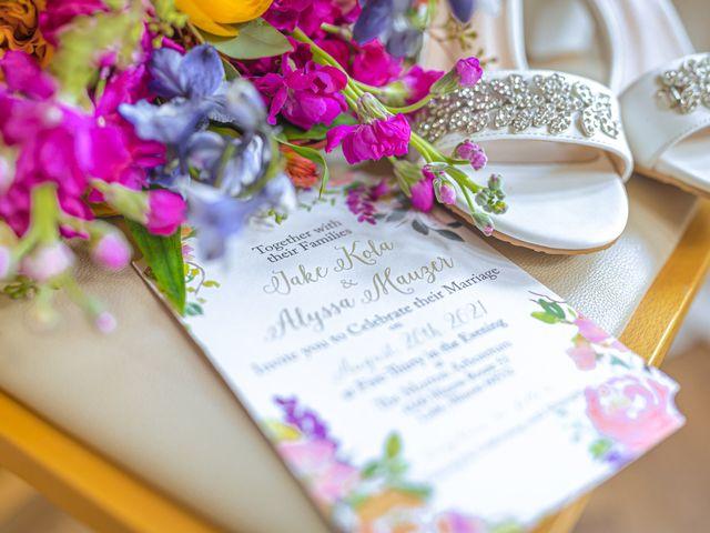 Alyssa and Jake's Wedding in Lisle, Illinois 8