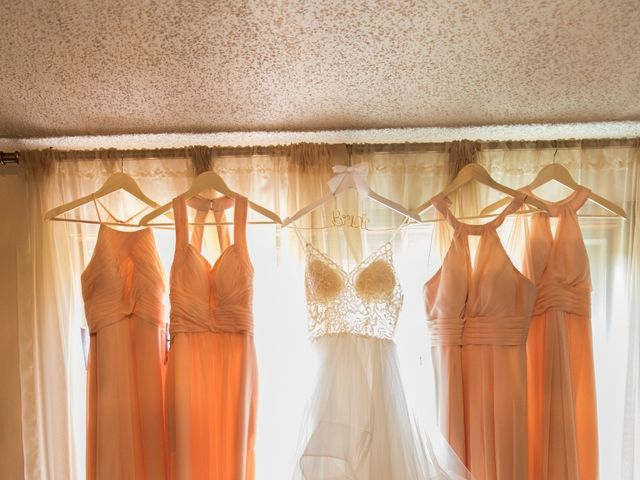 Taylor and Maxwell's Wedding in Marcellus, Michigan 3