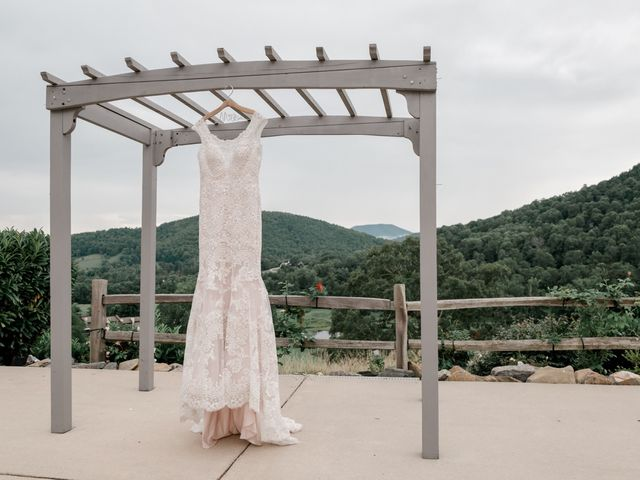 Amelia and Sean's Wedding in Asheville, North Carolina 19