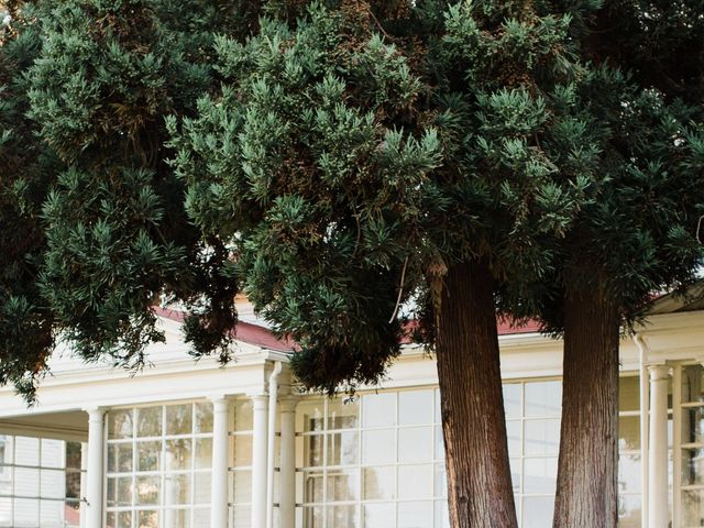 Drew and Sara's Wedding in Mill Valley, California 4