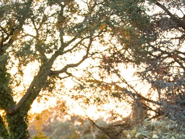 Ben and Paige's Wedding in Sonoma, California 102