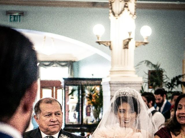 David  and Lene 's Wedding in San Antonio, Texas 8