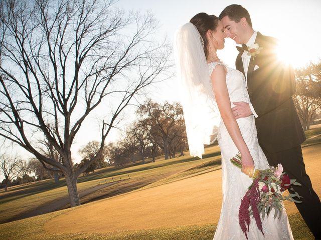 Ian and Emily's Wedding in Albuquerque, New Mexico 2