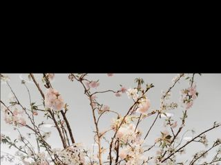 Superior Florist Ltd. 1