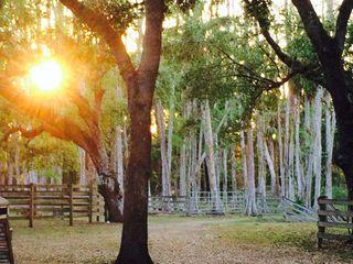 Arching Oaks Ranch 5