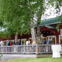 Alyson's Orchard 18