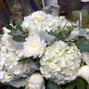 800ROSEBIG Wholesale Wedding Florist 26