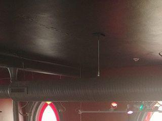 Leapin Lizard Lounge 2