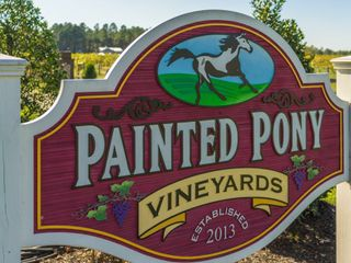 Painted Pony Vineyards 5