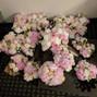 WholeBlossoms.com 40