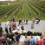 pellegrini vineyards 15