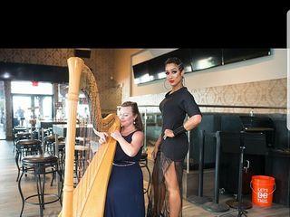 Harp Elegance: Joanna Whitsett, harpist 1