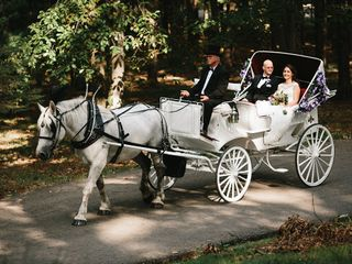 Carriage Limousine Service - Horse Drawn Carriages 6