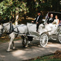 Carriage Limousine Service - Horse Drawn Carriages 12