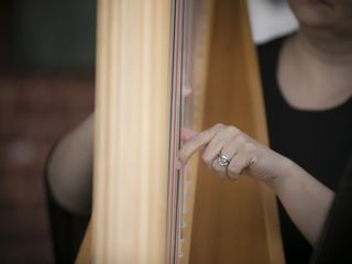 Melissa Tardiff Dvorak, Harpist 5