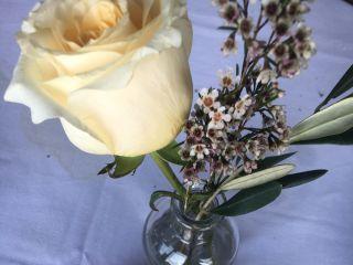 Violette's Flowers 7