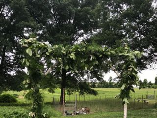 Phillies Bridge Farm 1