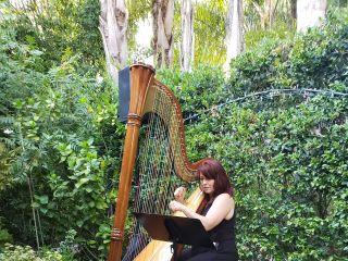 VeeRonna - Harpist 1