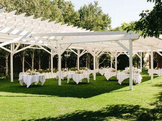 Cascade Garden 4