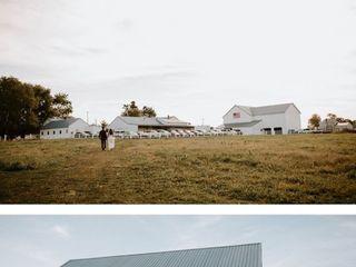 Five Fillies Farm 3