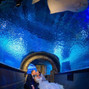 Newport Aquarium 20