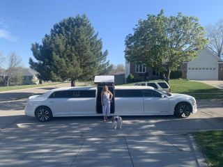 VIP Sedan &  Limousine 1