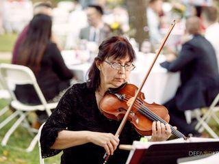 Harmony Strings 4