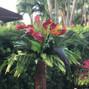 Hayal Flowers 9