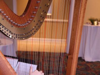 Harp Music by Alexandra Mullins 1