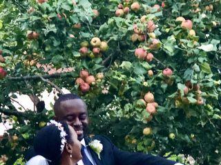 Minneapolis St Paul Wedding Officiants - Carolyn Germaine 3