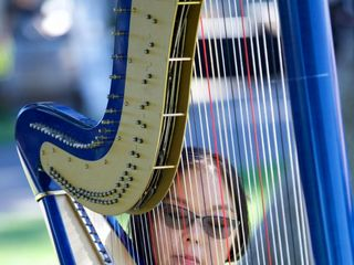 Harp Music By Vonette & Musical Networks 1