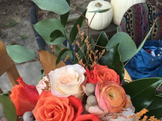 Carolina Roses 4