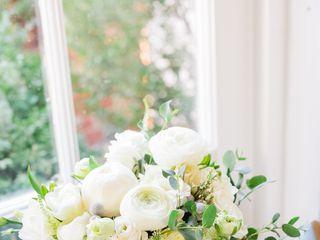 Hedge Fine Blooms 2